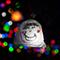 金津創作の森 アートドキュメント2016森のライトアート 高橋匡太展 -光のフォークロア-